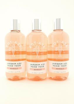Bath Body Works 3 Sea-Tox Sea Mineral Body Wash Shower Gel 1
